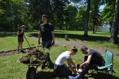 Gras wurde abgetragen und Löcher für die Insekten gebohrt.
