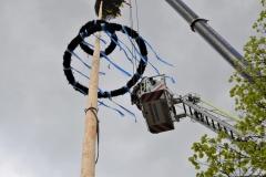 Maibaum 2019: Auf der Drehleiter in schwindelnder Höhe werden dann die Symbole montiert.
