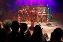 Faschingsball 2020: Auftritt der Showtanzgruppe des MFC